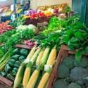 Tubo LED T8 9W 60cm ideal para Frutas e Verduras Branco Neutro - 8428350633389