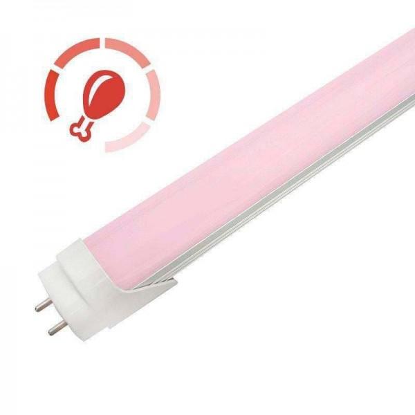 Tubo LED T8 Intenso 9W 60cm ideal para Talhos - 8428350640202